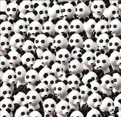 LEGO's Panda Puzzle find the Duplo Dog in horde of pandas