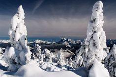 Dolomites    Photograph by Mirto Fontana
