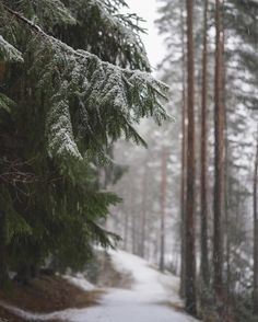 Image discovered by Katzie. Find images and videos about winter and snow on We Heart It - the app to get lost in what you love. Halloween Kostüm, Halloween Outfits, Cute Christmas Outfits, Thanksgiving Wallpaper, Christmas Wallpaper, Cabin Christmas, Christmas Snowman, Christmas Time, Winter Cabin