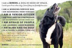 DINOS dogs in need of space