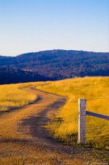 Winding country road | by neilcreek
