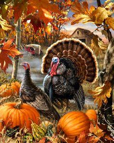 Gobbler Farms by dona Gelsinger ~ turkey ~ pumpkin ~ autumn