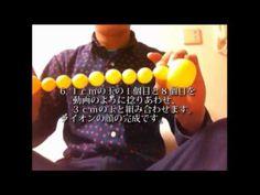 バルーンアート:ポンデライオンの作り方 / Balloon art : How to make a lion - YouTube