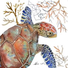 """Turtle art"" by Asho; Original Watercolor Painting"