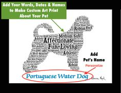 Traits of the Portuguese Water Dog The Portuguese Water Dog herded fish into nets, retrieved lost nets or equipment, and served as a boat-to-boat or boat-to-shore courier on the coast of Portugal. Lat