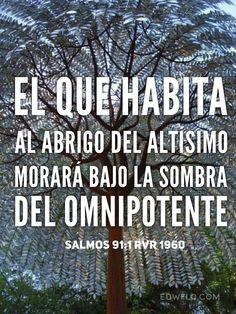 """""""El que habita al abrigo del Altísimo Morará bajo la sombra del Omnipotente."""" Salmos 91:1 RVR1960"""
