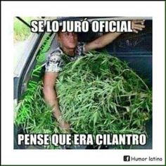 Una equivocación la puede tener cualquiera! Funny Spanish Memes, Spanish Humor, Spanish Quotes, Funny Fails, Funny Jokes, Hilarious, Cartoon Networ, Mexican Memes, Having A Bad Day