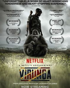 This film shattered my heart into a million pieces.  In the endless pursuit to exploit every last one of our planet's resources wildlife & ecosystems become its silent victims. Seeing a few brave souls battling on the front lines to protect our natural world is simply awe-inspiring!  Check out Virunga on Netflix and support the efforts to protect Virunga National Park and its last remaining mountain gorillas from extinction by learning more here: http://ift.tt/1LJMrjk  #Virunga #VirungaTeam…