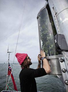 Plastiki | Vertical garden installed on a boat