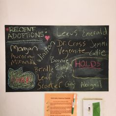 House of Dreams found homes for 18 cats this year! For a shelter of our size 18 adoptions is huge (we've averaged between 30-40 total population in 2015)! I want to thank everyone who's dedication and hard work made this possible. It's so gratifying to see the board this full at the end of the year.  _______________________>..<_______________________  Give yourself an easy Tax Day 2016 and make a tax-deductible donation to House of Dreams today. There is still plenty of time before the end…