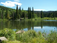 One of the Mesa lakes on the Grand Mesa byway drive. Loved going camping there with my Gram, Mom, Aunt Sheryl and the rest of the family.