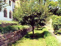 Idylle im Kräutergarten