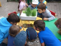 Back to the Roots® & Sodexo, Partner to Undo Food™ in Thousands of Schools Nationwide, Bringing Gardens into the Classroom   3BL Media
