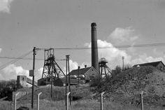 Unseen images of Fenton: Bert Bentley Collection. Glebedale Road. Collieries Ltd NCB.