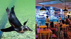 Pingoo Restaurant - Neo SOHO Mall