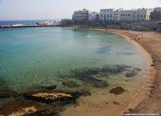#chivodafone scopre le delizie salentine e a #Gallipoli può navigare con la rete 4G #itinerari:  http://www.viaggionelmondo.net/2012/09/salento-itinerario-gastronomico/