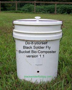 how to kill drain flies diy