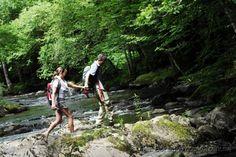 Randonnée dans la #nature sauvage et préservée du #Morvan