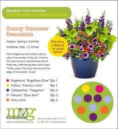 Diy Planters, Garden Planters, Flower Pots, Flower Baskets, Potted Flowers, House Landscape, Landscape Design, Small Front Yard Landscaping, Potato Vines
