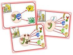 """Affichage graphème """"g"""", version alphas Sons, Alphabet, Cycle 2, Lily, School, Montessori, Alpha Letter, Cursive Alphabet Letters, First Grade"""