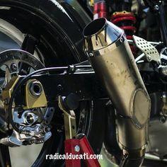 Radical Ducati S.L.: Next week a new beast will arrive !!
