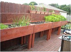Elevated Garden Beds No Kneeling or Bending - News - Bubblews