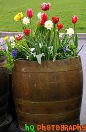 Flower Barrel