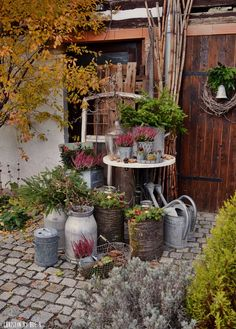 Best Pictures courtyard Garden Pots Thoughts You will find almost countless techniques for planting garden pots and urns as there are garden pots Diy Garden, Garden Cottage, Balcony Garden, Garden Planters, Herb Garden, Garden Projects, Rocks Garden, Deco Champetre, Pot Jardin