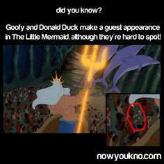 MIND BLOWN.