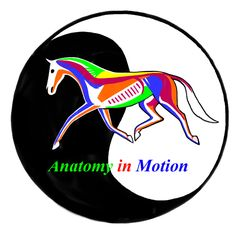 Anatomy In Motion: The Visible Horse & The Visible Rider. Centered Riding Clinicians: Susan Harris & Peggy Brown