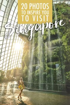 Singapore boasts a blend of Malaysian, Indian, Chinese, Arab and English cultures. Here's my ultimate Singapore travel guide! Singapore Guide, Singapore Travel Tips, Singapore Itinerary, Visit Singapore, Asia Travel, Solo Travel, Alaska, Burma, Thailand