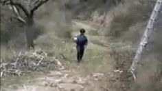 16 GIFs of People Encountering Dangerous Puddles from A Thing From The Internet