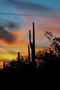 Another gorgeous sunset in Arizona.  The sky looks like a watercolor painting.