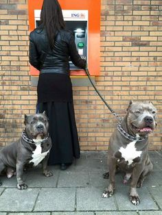 The Best ATM Withdrawal Defense...Two-Sided Tank System.Using an ATM alone is risky these days, especially at night. Security cameras, cubicle-type walls, and even armed guards have been set up at certain locations to discourage muggers and opportunists,