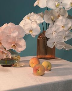 offerings of diggity Pixiv Fantasia, Prop Styling, Still Life Art, Flower Aesthetic, Still Life Photography, Artist At Work, Wall Collage, Aesthetic Pictures, Photo Art