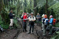 Beklimming Kilimanjaro 1e dag