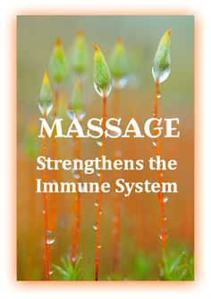 MASSAGE Strengthens the Immune System  @FIRSTCorvallis  #FIRSTCorvallis