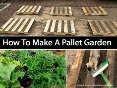 How To Make A Pallet Garden - Pallets are being used for all kinds of things these days indoors and out. Here is a pallet garden from the very resourceful Mavis over at onehundreddollarsamonth.com. Mavis shares her steps in creating her pallet garden.