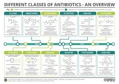 This week is Antibiotic Awareness Week – learn more about the different types of antibiotics with this graphic!