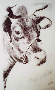 Google Image Result for http://zubetta.free.fr/P6%2520lisaa/Artistes%2520divers/Warhol%2520Andy/Warhol%2520-%2520Cow%2520(3).jpg