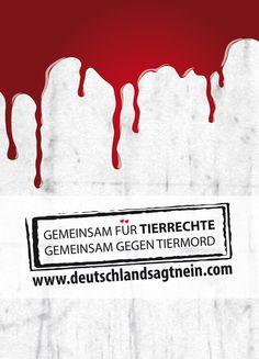 Postkarte für mehr #Tierrechte und #Tierschutz    http://pokamax.de/gallery/index.php?suche=tierschutz