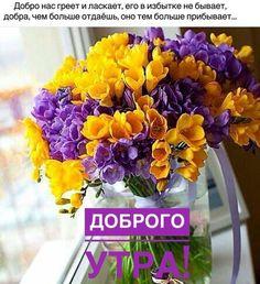 Цветочный Венок, Венки, Домашний Декор