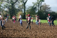 Juvenilia Società Agricola, Giavenale di Schio (VI)