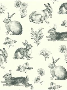 Toile Wallpaper in on sale now at AmericanBlinds.com! We're loving this sweet bunny toile.