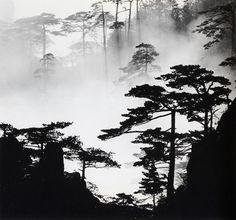 Wang Wusheng [Chinese, b. 1945] Mt. Huangshan (54) Pie Forest in Mist, taken at Lion Peak 1984 Gelatin silver print