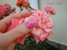 Simple pinky flowers