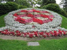 Looking for a fun way to teach your kids how to tell time? Then why not plant a clock garden design. Continue reading this article to learn how to make a clock garden. Garden Art, Garden Plants, Garden Design, Patio Design, Beautiful Flowers Garden, Beautiful Gardens, Honeysuckle Plant, Victorian Clocks, Floral Clock