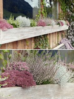With each new year come new interior trends and crages to consider and even reconsider, so that you Life Is Beautiful, Beautiful Gardens, Pin Collection, The Great Outdoors, Home And Garden, Gardening, Colours, Fall, Autumn