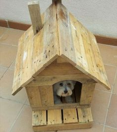 Bring the Luck to Home: 16 Pallet Dog House | Pallet Furniture DIY