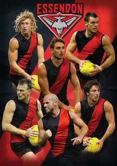 AFL Essendon Bombers Polyart on Behance Essendon Football Club, Australian Football League, Triangle Art, Rugby, Sport Outfits, Captain America, Soccer, Stephen Curry, Sash